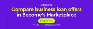 business loan with no credit check